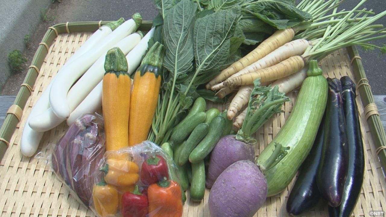 猛暑は珍しい野菜で乗り切る!
