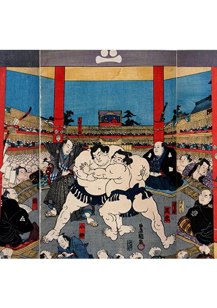 平成30年夏巡業 大相撲新潟場所